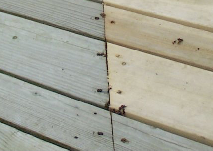 how to blend new and old deck boards best deck stain reviews ratings
