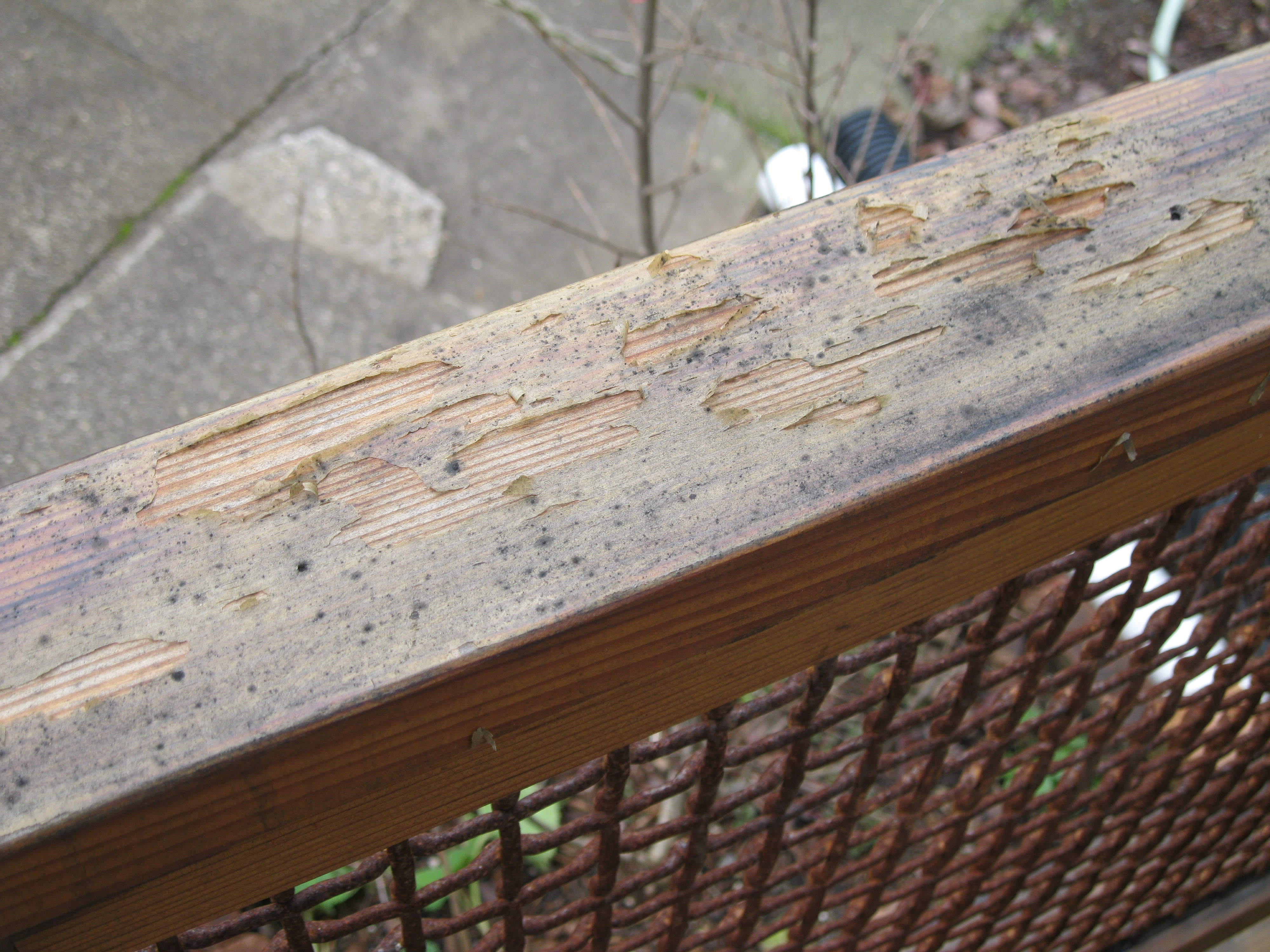 Deck Stain Reviews Excellent Solid Deck Stain Colors
