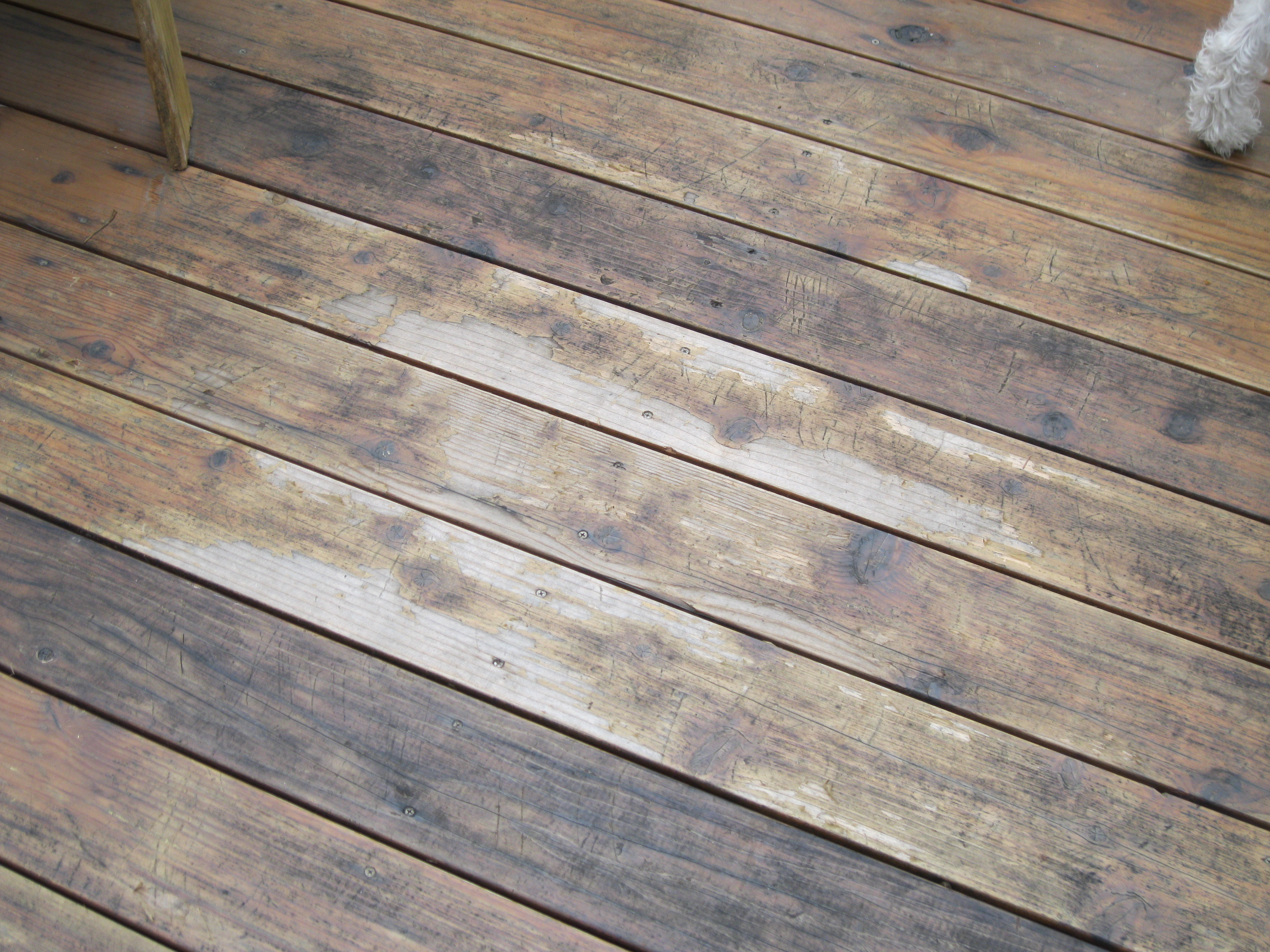 Best deck stain reviews ratings benjamin moore arborcoat for Best wood for deck