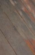 Moldy Deck